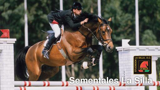 DestGr_Sementales_esp