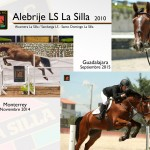 alebrije-ls-_2014-2015_web