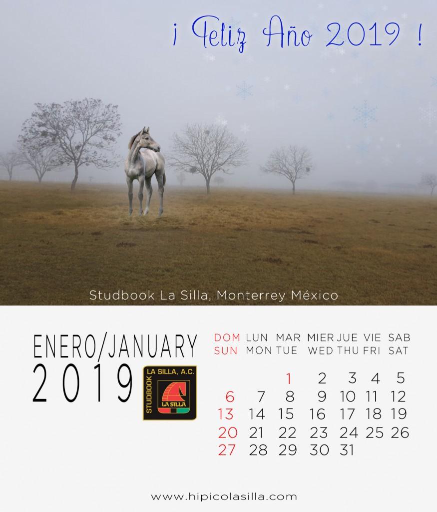 1-Calendario-2019--ENERO-2