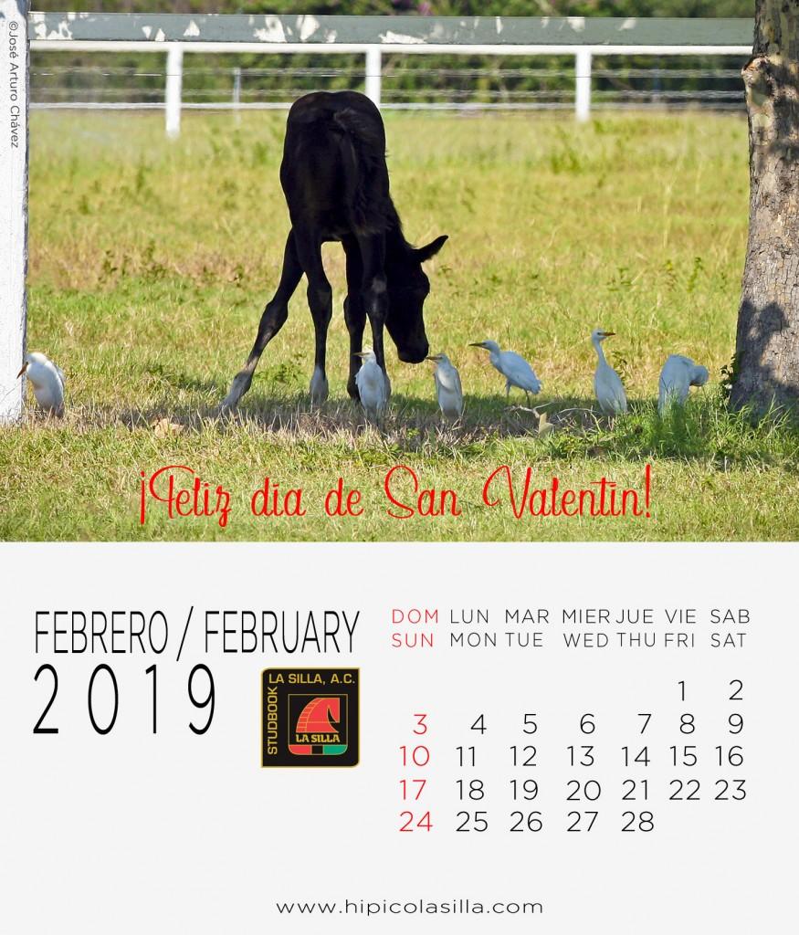 2-Calendario-2019--FEBRERO