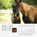 5-Calendario-2019--MAYO