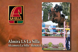 La Silla Horses on the Showground