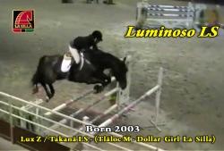 Video: Luminoso LS