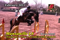 Video: Manzanillo LS