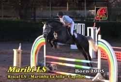 Video: Maribi LS
