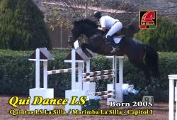 Video: Qui Dance LS